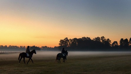 Exercise riders, pre-dawn, at The Aiken Training track.